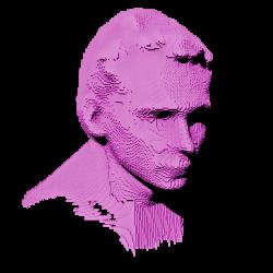 stylized portrait of the artist